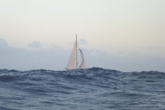 Sea - Boat 2a-LOW RES 1024px