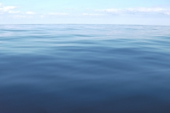 Sea - Flat 1a-LOW RES 1024px