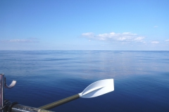 Sea - Flat 2b Side-LOW RES 1024px