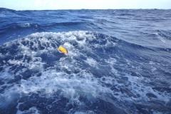 Sea - Plastic Trash flooding-LOW RES 1024px
