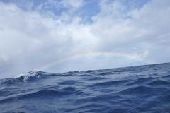 Sea - Rainbow 3-LOW RES 1024px