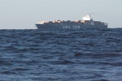 Sea - Ship 2c-LOW RES 1024px