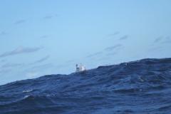 Sea - Ship 2d-LOW RES 1024px