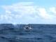 Barbados - Ankunft - Offiziele Zielline - Fackel-LOW RES 1024px
